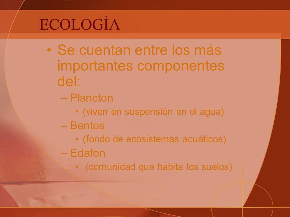 ECOLOGÍA Se cuentan entre los más importantes componentes del: