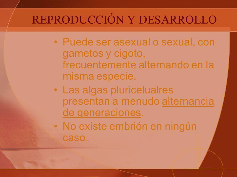 REPRODUCCIÓN Y DESARROLLO