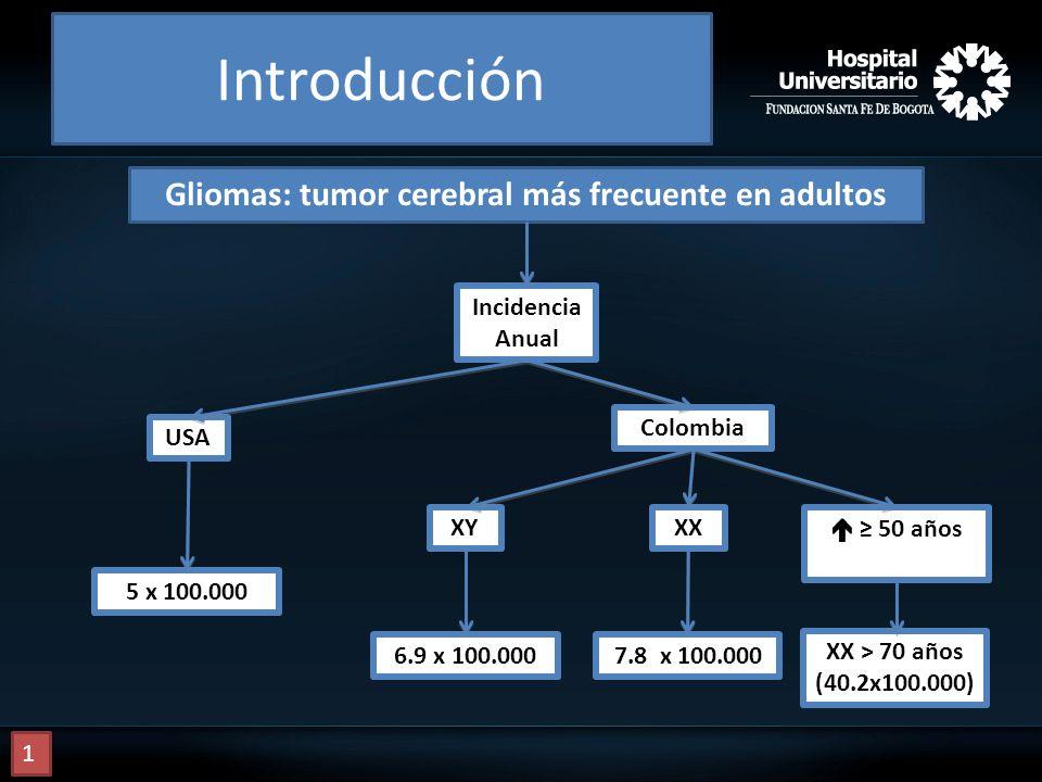 Gliomas: tumor cerebral más frecuente en adultos