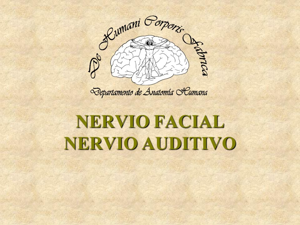 NERVIO FACIAL NERVIO AUDITIVO
