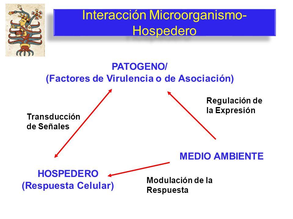 Interacción Microorganismo-Hospedero