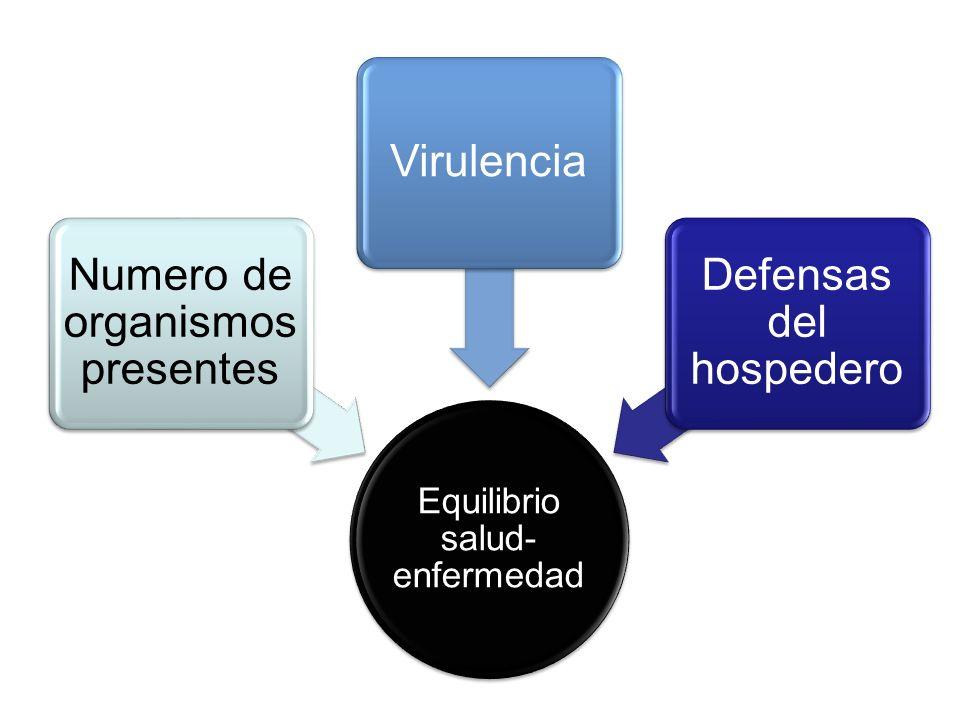 Equilibrio salud- enfermedad Numero de organismos presentes Virulencia