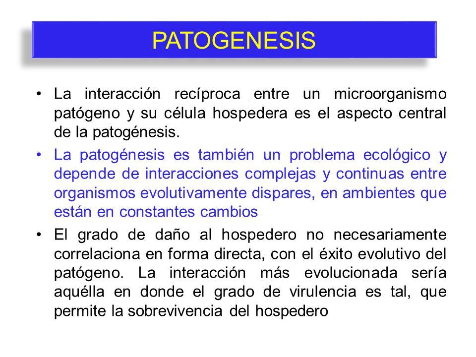 PATOGENESIS La interacción recíproca entre un microorganismo patógeno y su célula hospedera es el aspecto central de la patogénesis.