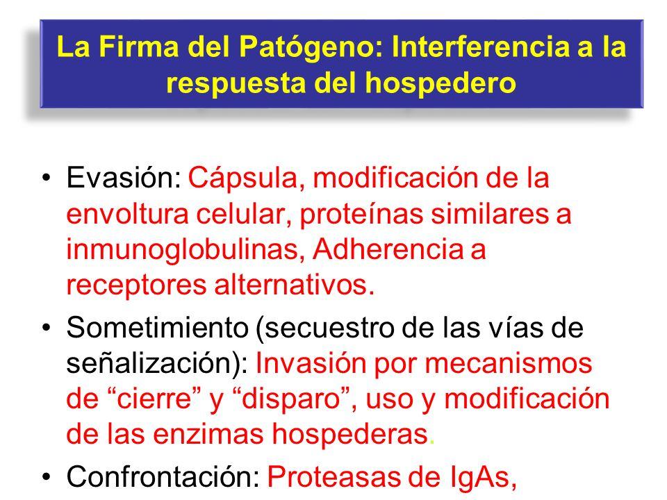 La Firma del Patógeno: Interferencia a la respuesta del hospedero