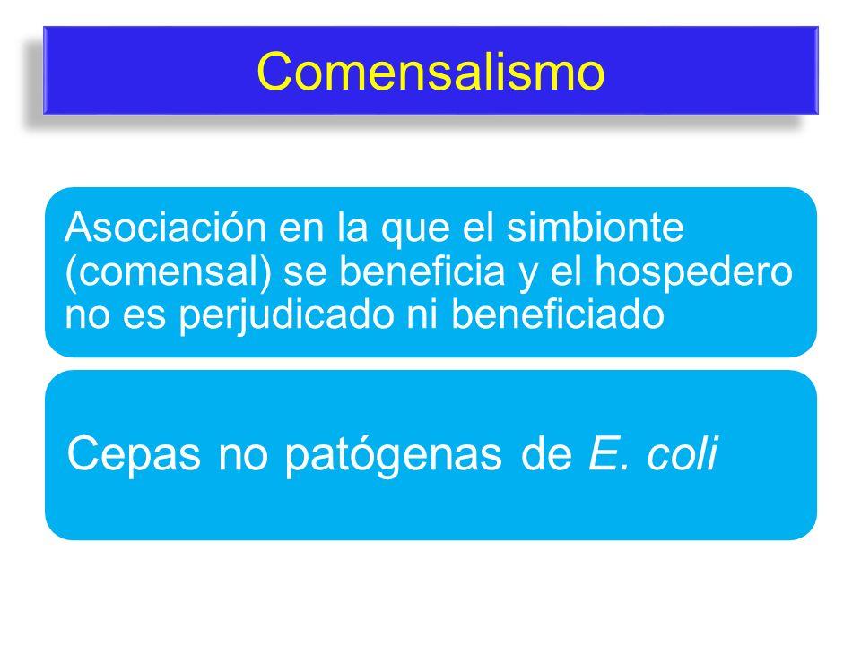 Comensalismo Cepas no patógenas de E. coli