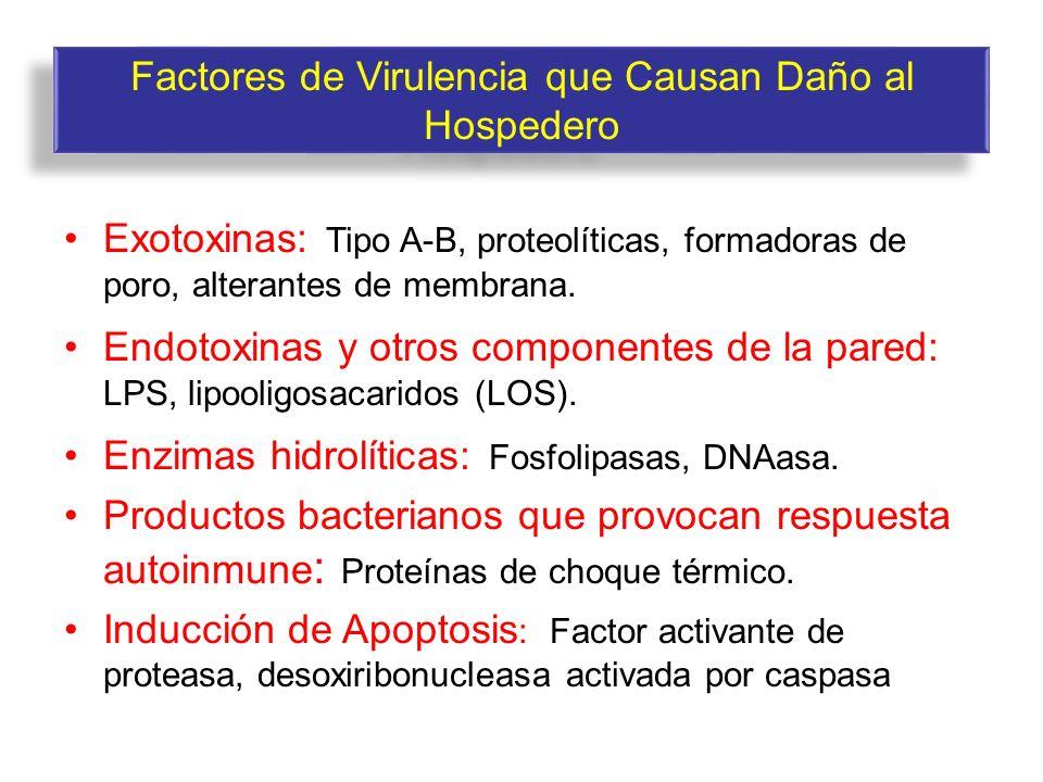 Factores de Virulencia que Causan Daño al Hospedero