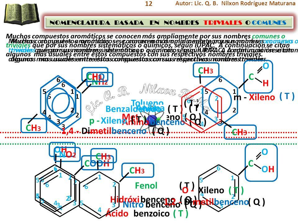 Lic. Q. B. Nilxon RoMa O H CH3 CHO CH3 CH3 C NH2 m - Xileno ( T )