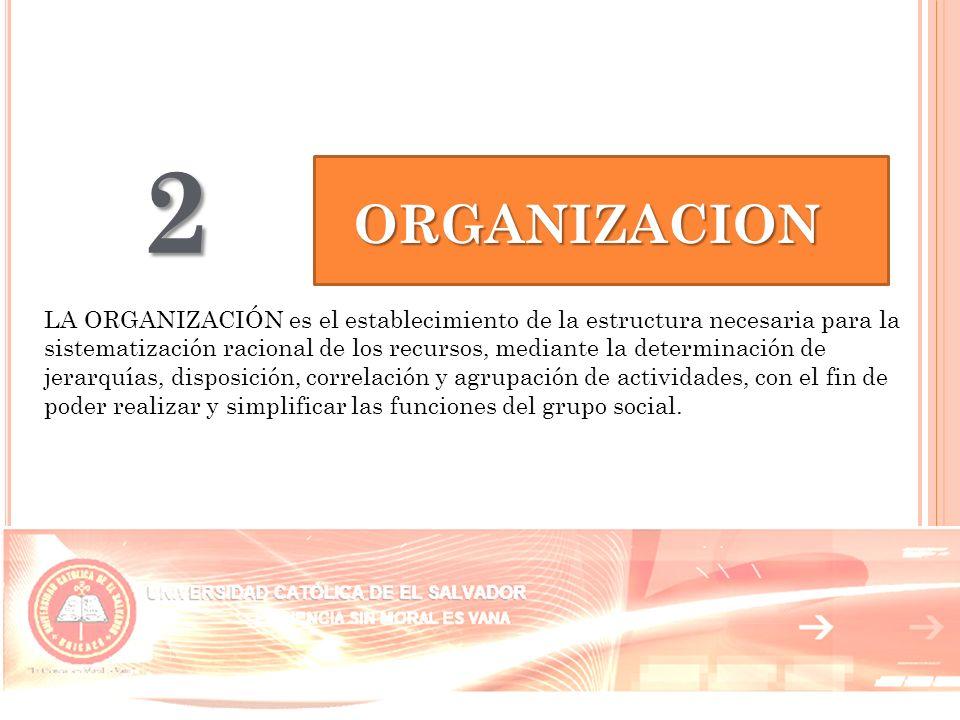 2 ORGANIZACION.