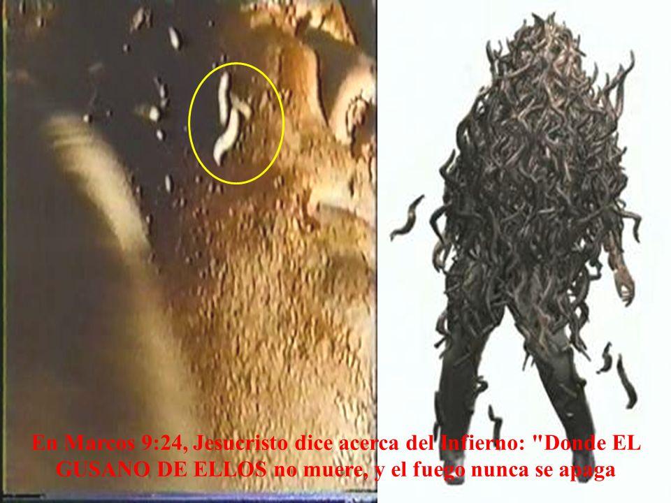 En Marcos 9:24, Jesucristo dice acerca del Infierno: Donde EL GUSANO DE ELLOS no muere, y el fuego nunca se apaga