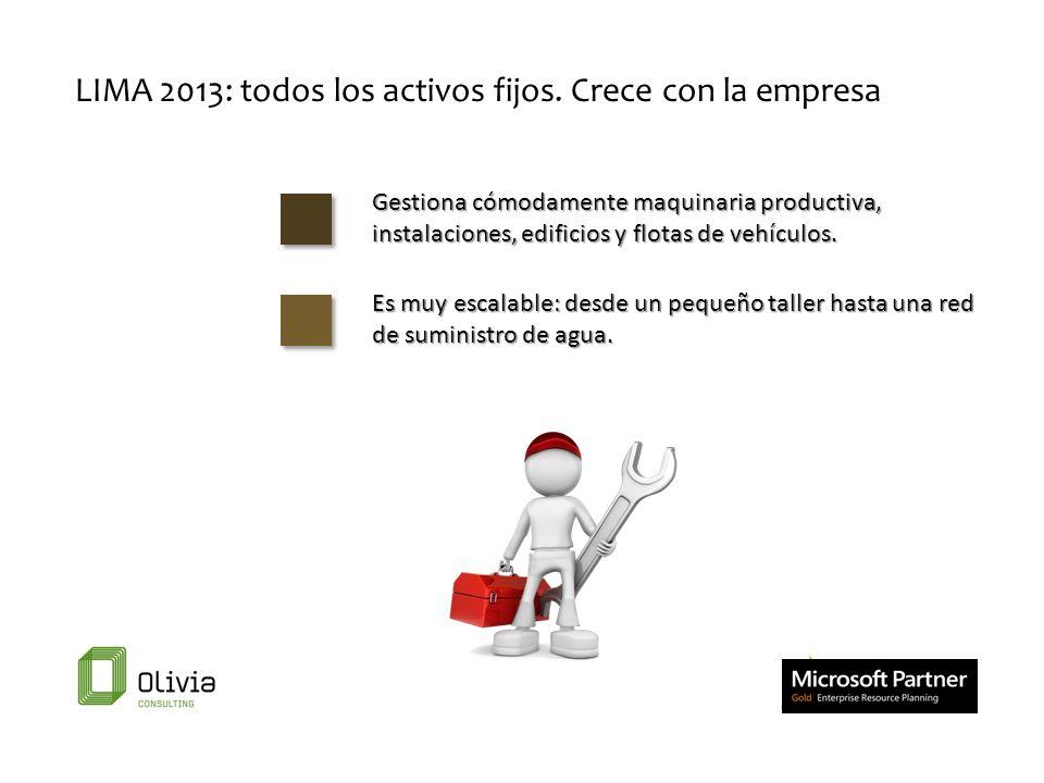 LIMA 2013: todos los activos fijos. Crece con la empresa