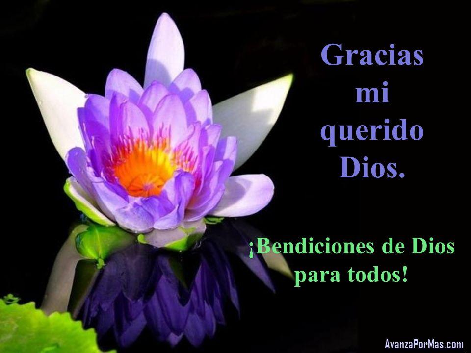 Gracias mi querido Dios.