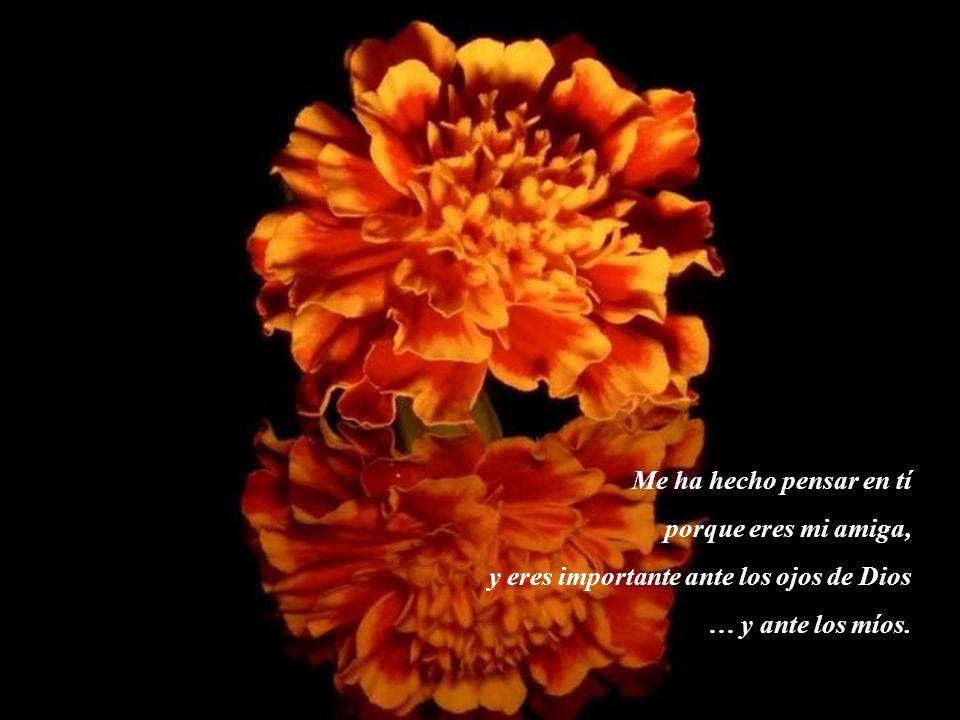 Me ha hecho pensar en tí porque eres mi amiga, y eres importante ante los ojos de Dios.