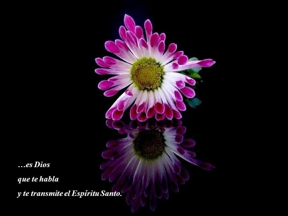 …es Dios que te habla y te transmite el Espíritu Santo.