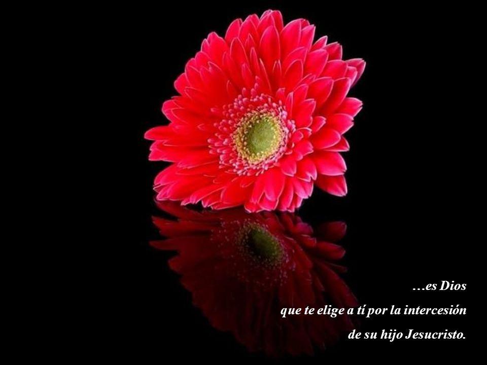 …es Dios que te elige a tí por la intercesión de su hijo Jesucristo.