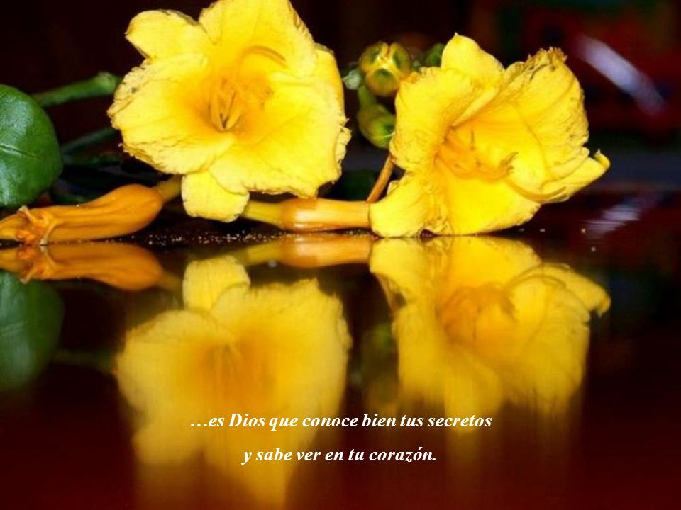 …es Dios que conoce bien tus secretos