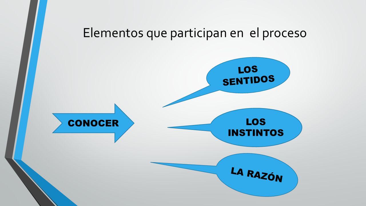 Elementos que participan en el proceso