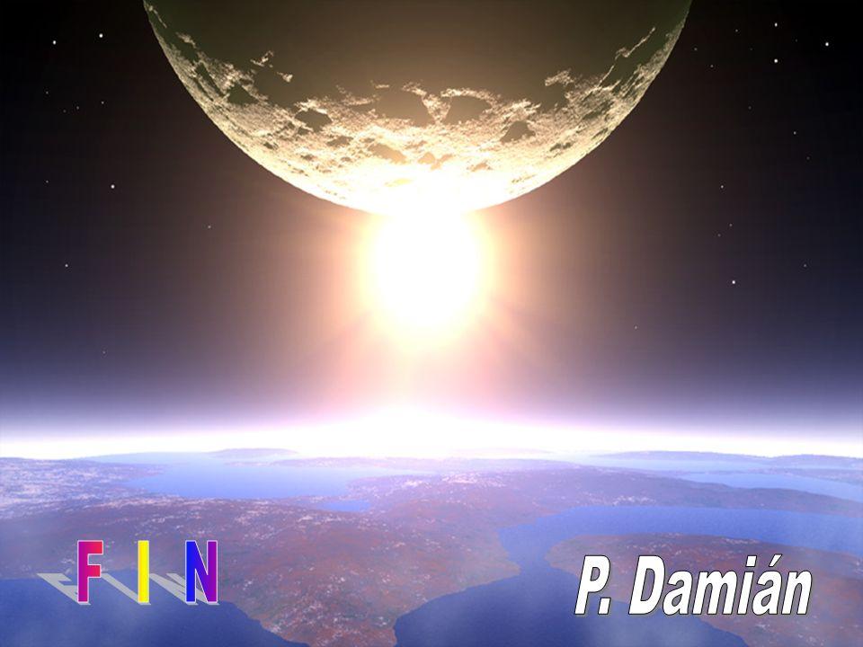 F I N P. Damián