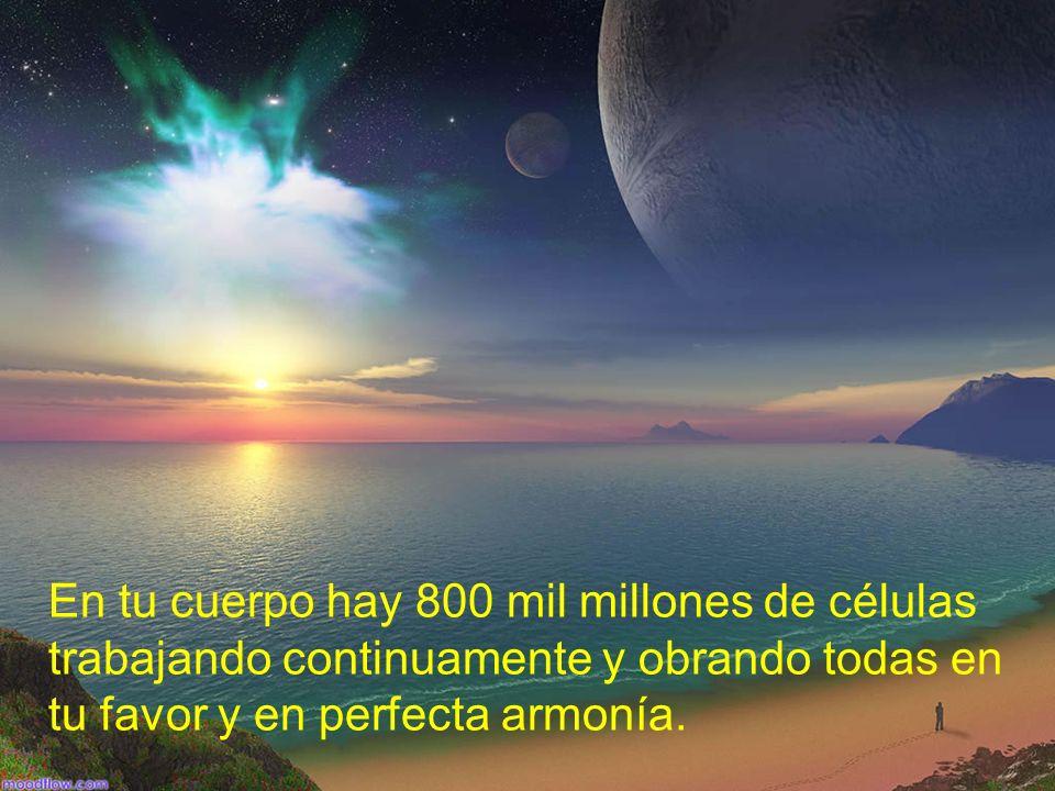 En tu cuerpo hay 800 mil millones de células trabajando continuamente y obrando todas en tu favor y en perfecta armonía.
