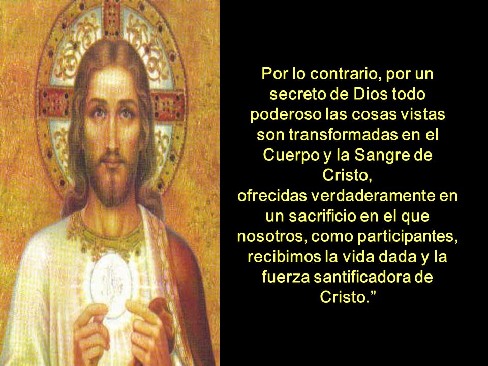 recibimos la vida dada y la fuerza santificadora de Cristo.
