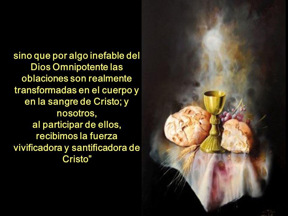 recibimos la fuerza vivificadora y santificadora de Cristo