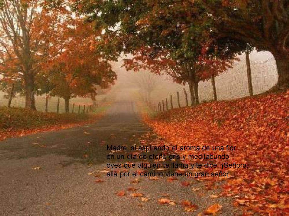 Madre, si aspirando el aroma de una flor en un día de otoño gris y meditabundo oyes que alguien te llama y te dice: ¡Señora, allá por el camino viene un gran señor