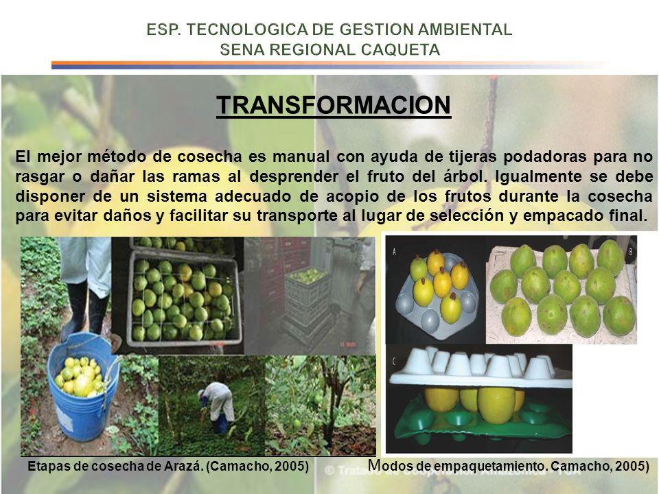 ESP. TECNOLOGICA DE GESTION AMBIENTAL SENA REGIONAL CAQUETA