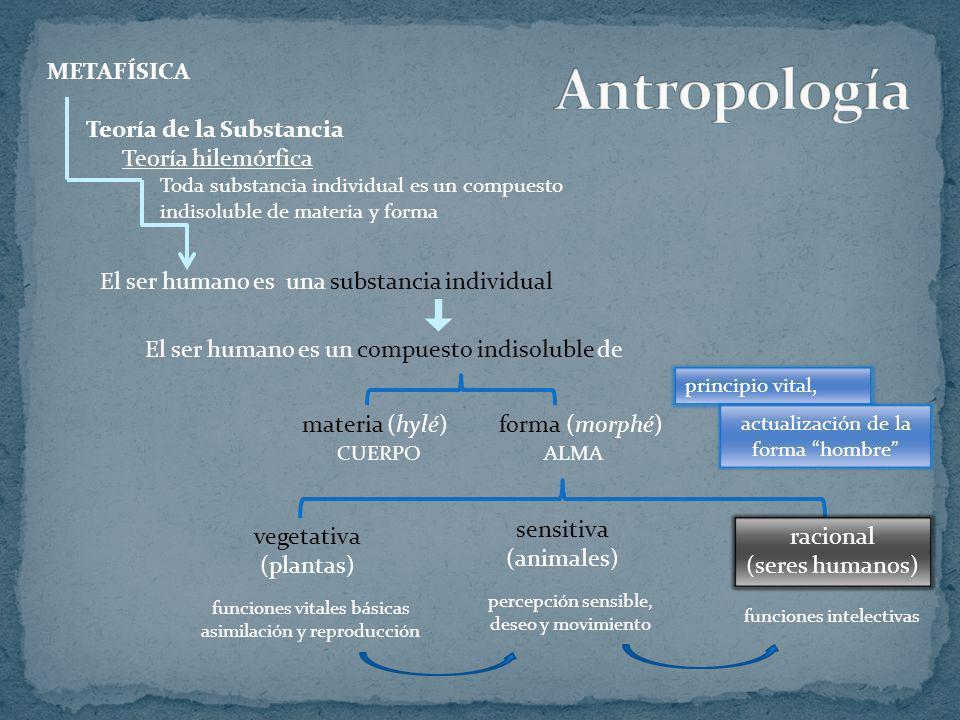 Antropología METAFÍSICA Teoría de la Substancia Teoría hilemórfica