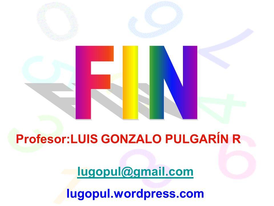 FIN Profesor:LUIS GONZALO PULGARÍN R lugopul@gmail.com