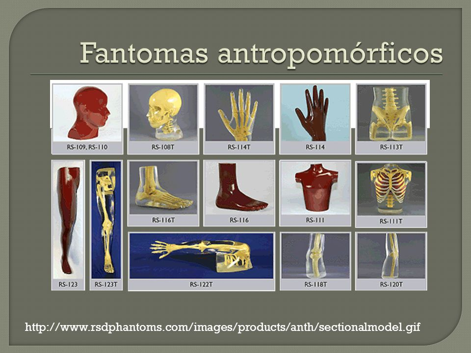 Fantomas antropomórficos