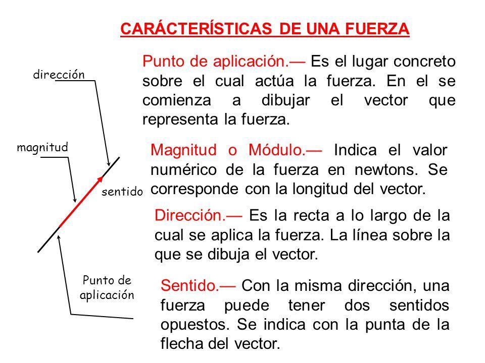CARÁCTERÍSTICAS DE UNA FUERZA