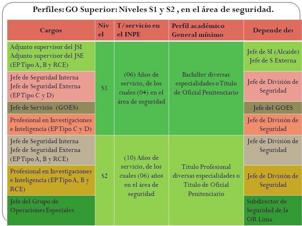Perfiles: GO Superior: Niveles S1 y S2 , en el área de seguridad.