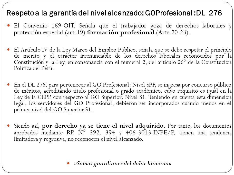 Respeto a la garantía del nivel alcanzado: GOProfesional :DL 276
