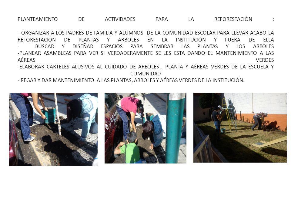 PLANTEAMIENTO DE ACTIVIDADES PARA LA REFORESTACIÓN : - ORGANIZAR A LOS PADRES DE FAMILIA Y ALUMNOS DE LA COMUNIDAD ESCOLAR PARA LLEVAR ACABO LA REFORESTACIÓN DE PLANTAS Y ARBOLES EN LA INSTITUCIÓN Y FUERA DE ELLA - BUSCAR Y DISEÑAR ESPACIOS PARA SEMBRAR LAS PLANTAS Y LOS ARBOLES -PLANEAR ASAMBLEAS PARA VER SI VERDADERAMENTE SE LES ESTA DANDO EL MANTENIMIENTO A LAS AÉREAS VERDES -ELABORAR CARTELES ALUSIVOS AL CUIDADO DE ARBOLES , PLANTA Y AÉREAS VERDES DE LA ESCUELA Y COMUNIDAD - REGAR Y DAR MANTENIMIENTO A LAS PLANTAS, ARBOLES Y AÉREAS VERDES DE LA INSTITUCIÓN.
