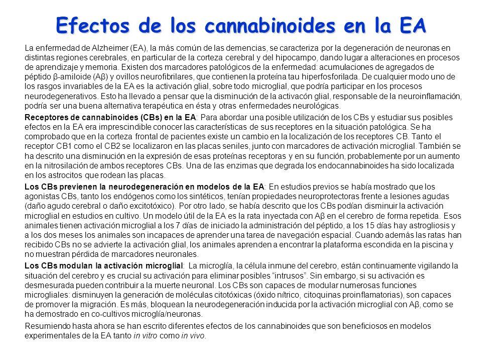 Efectos de los cannabinoides en la EA