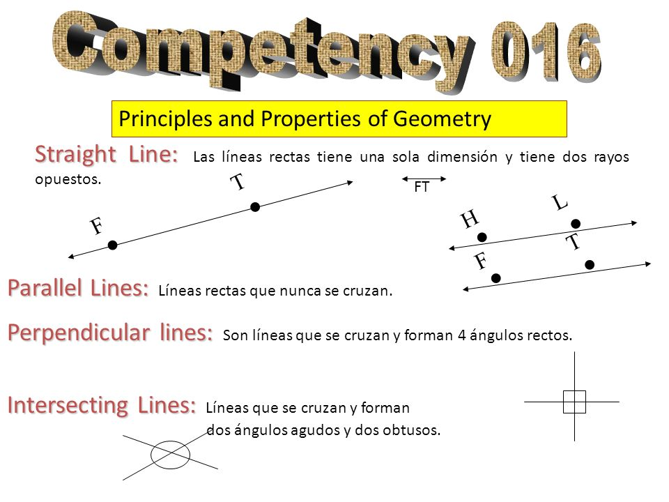 Competency 016 Principles and Properties of Geometry. . T. F. . L. H. T. F.