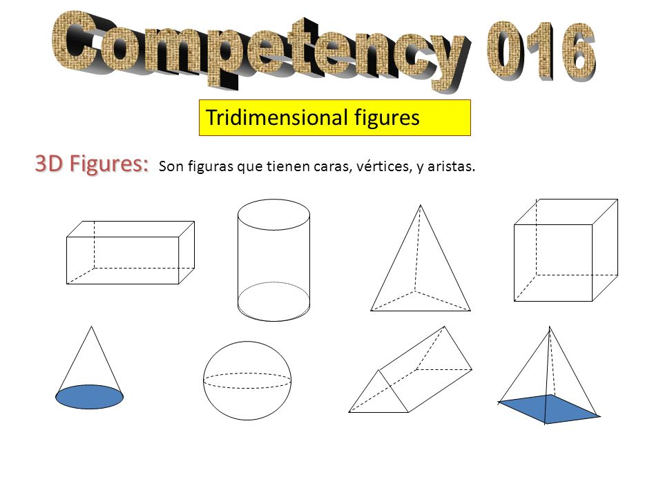 Competency 016 Tridimensional figures.