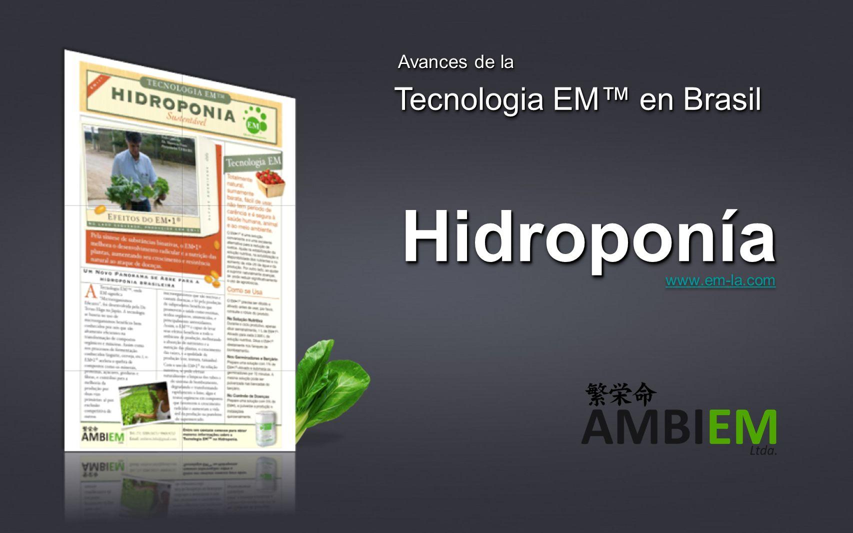 Avances de la Tecnologia EM™ en Brasil Hidroponía www.em-la.com