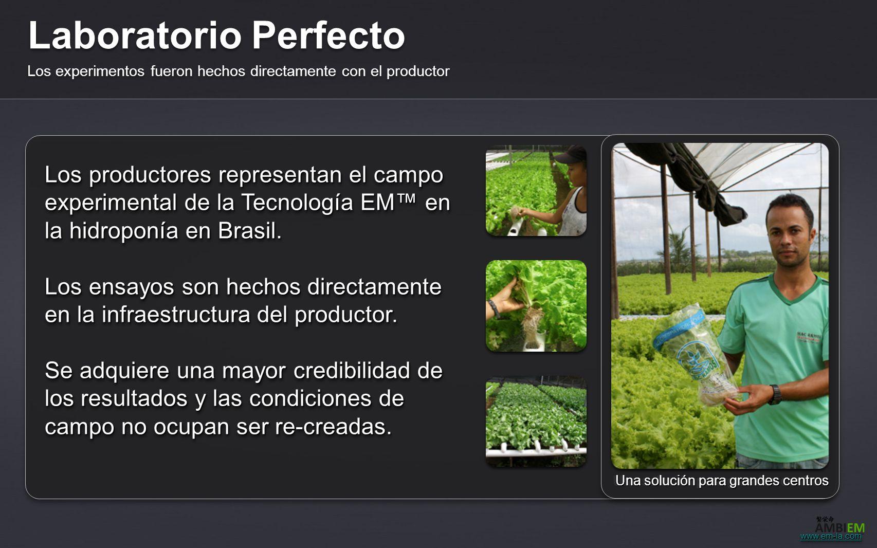 Laboratorio Perfecto Los experimentos fueron hechos directamente con el productor. Una solución para grandes centros.