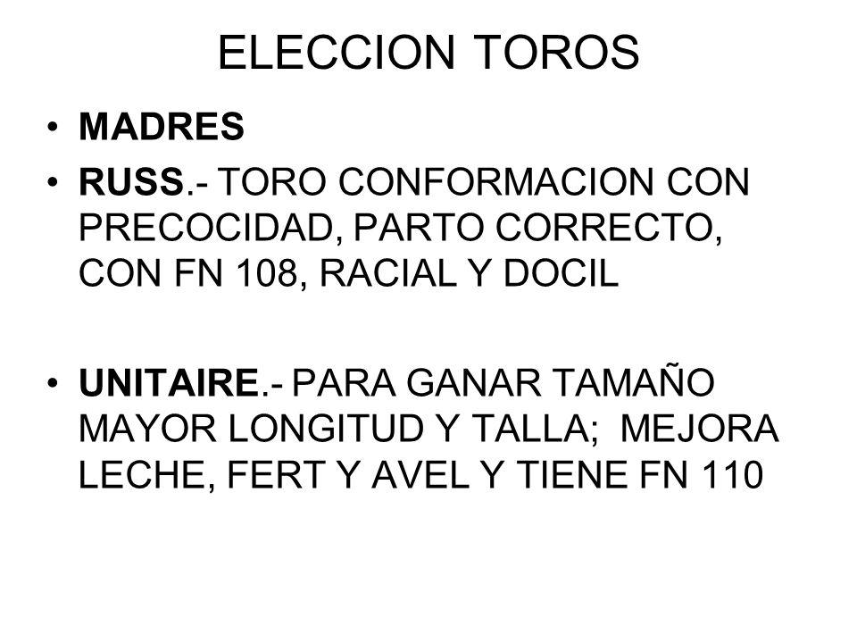 ELECCION TOROSMADRES. RUSS.- TORO CONFORMACION CON PRECOCIDAD, PARTO CORRECTO, CON FN 108, RACIAL Y DOCIL.