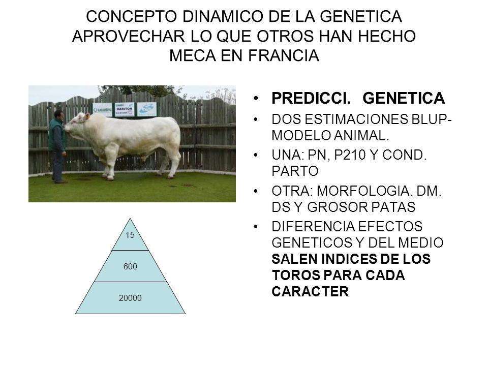 CONCEPTO DINAMICO DE LA GENETICA APROVECHAR LO QUE OTROS HAN HECHO MECA EN FRANCIA