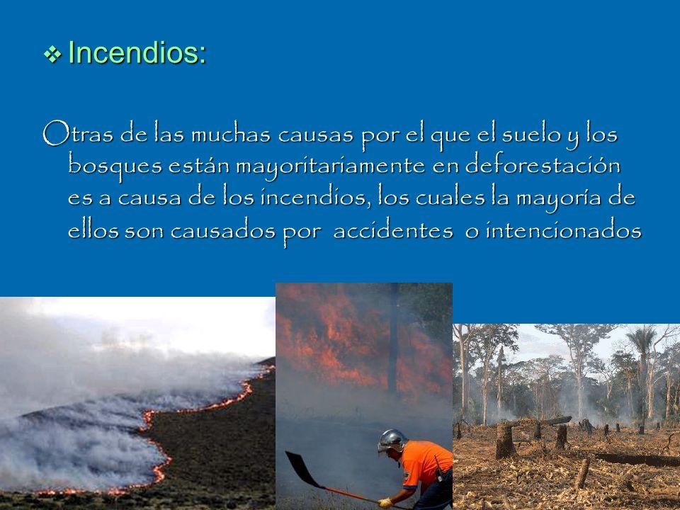 Incendios: