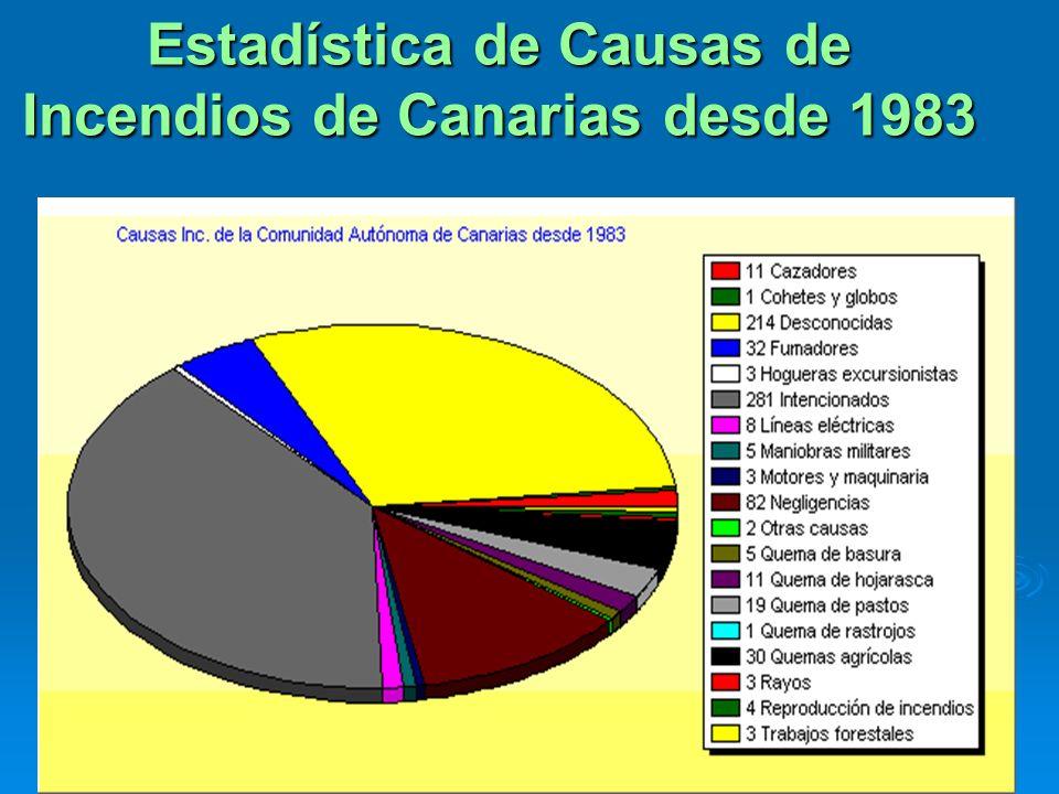 Estadística de Causas de Incendios de Canarias desde 1983