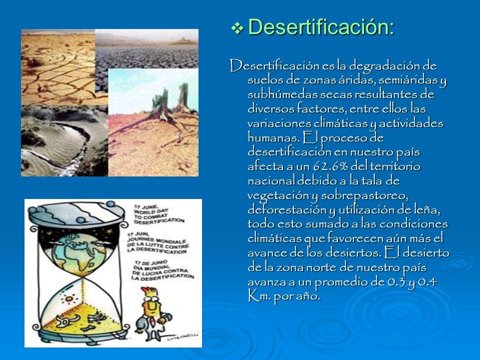 Desertificación: