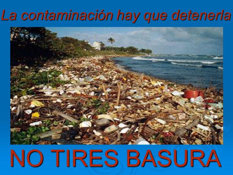La contaminación hay que detenerla