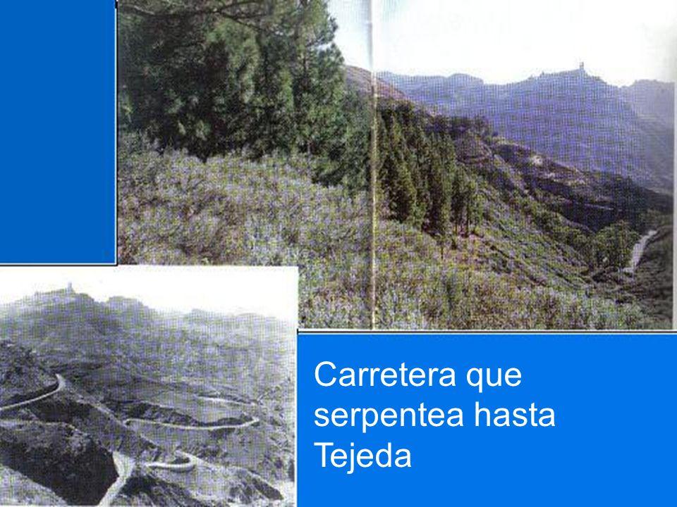 Carretera que serpentea hasta Tejeda