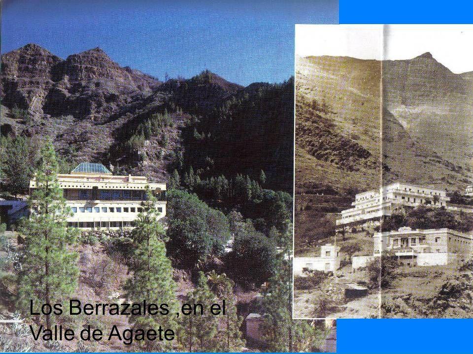 Los Berrazales ,en el Valle de Agaete