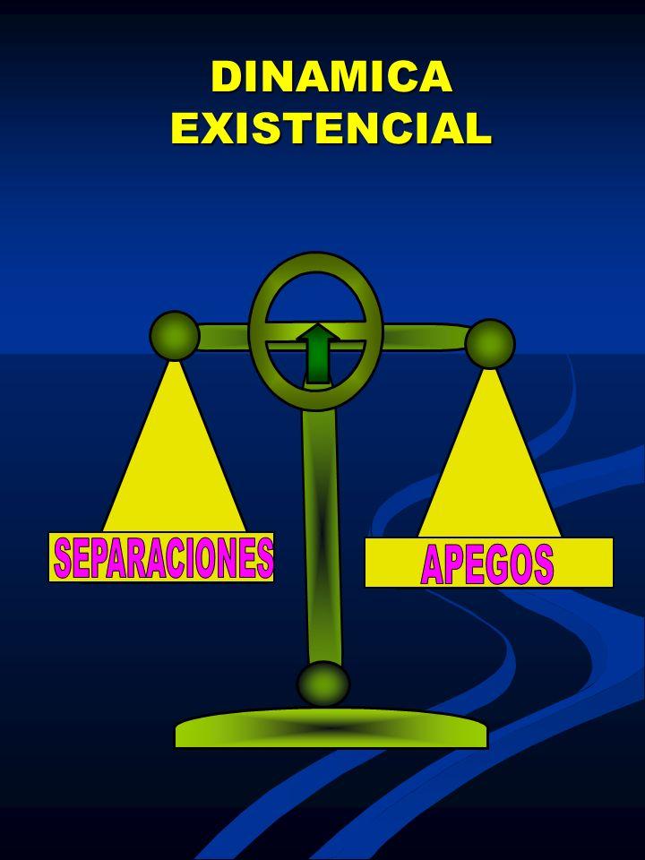 DINAMICA EXISTENCIAL SEPARACIONES APEGOS