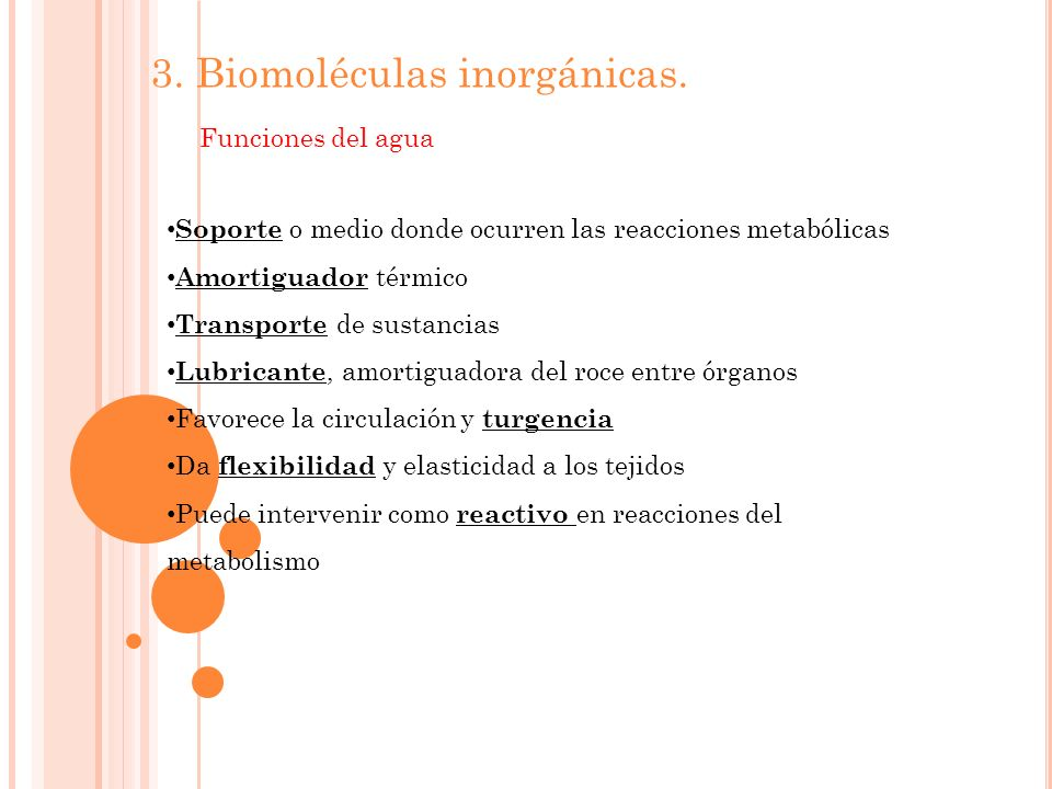 3. Biomoléculas inorgánicas.