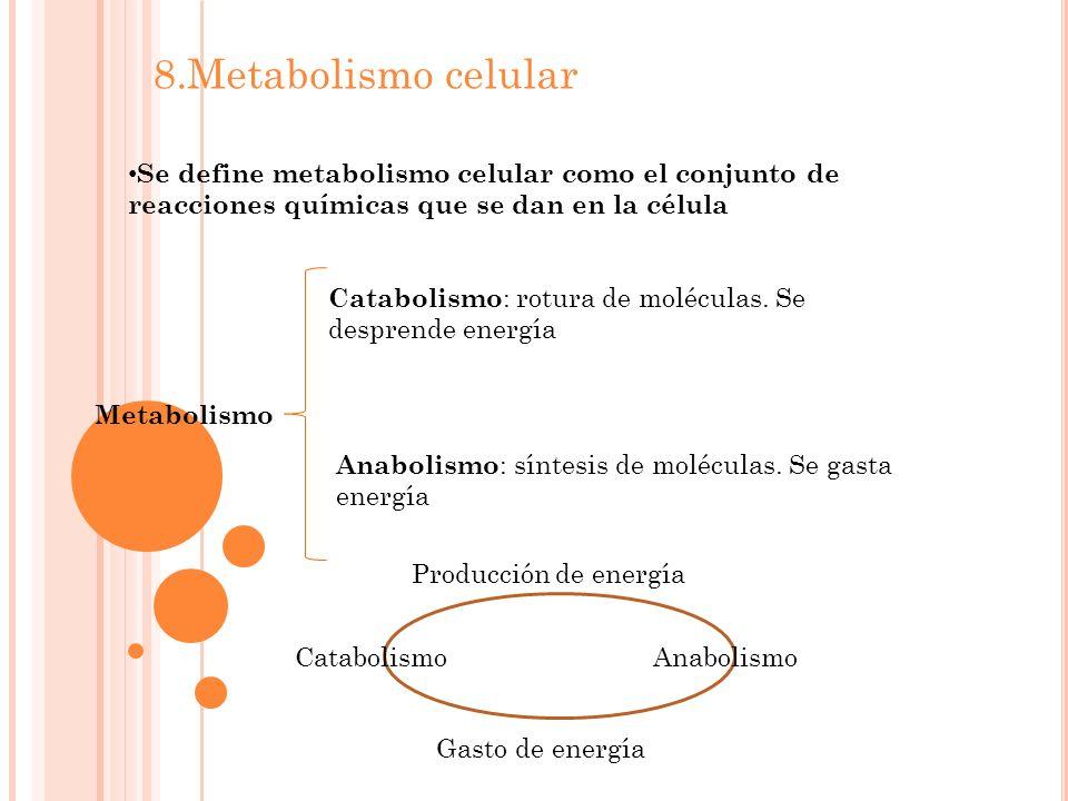 8.Metabolismo celular Se define metabolismo celular como el conjunto de reacciones químicas que se dan en la célula.