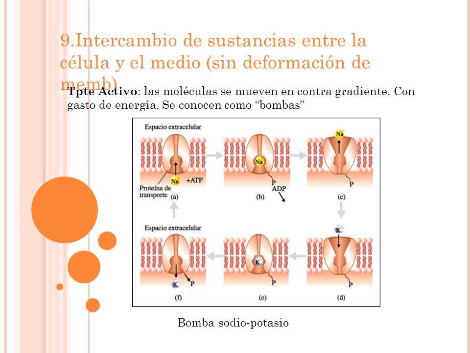 9.Intercambio de sustancias entre la célula y el medio (sin deformación de memb)